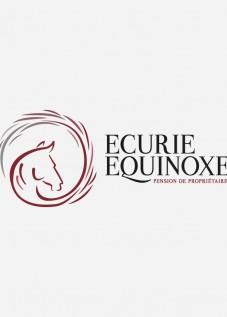 Elsa-Roussillat-Pension-Equinoxe-Behance-1
